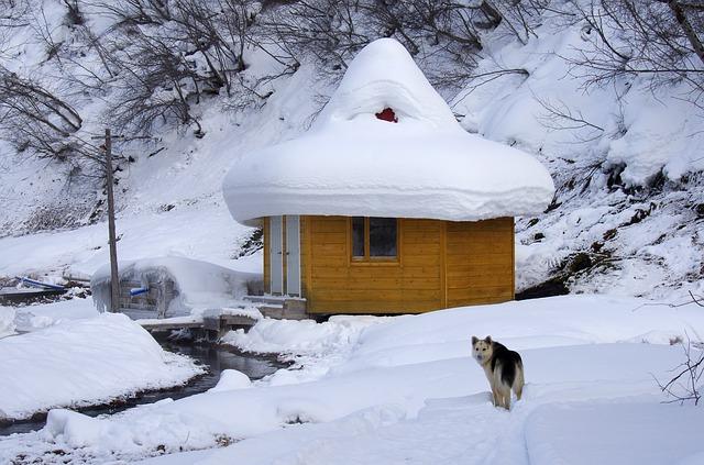 Mobil-home en promo au camping les Blancs Chênes